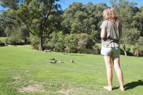 Never too old to feed the ducks!