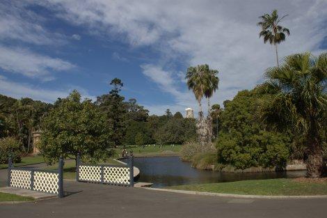 Sydney Botanical Gardens.