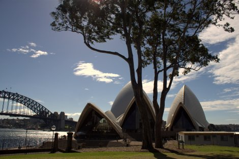 Sydney Opera House - Most photogenic building ever? View from the Park.